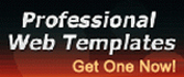 Professional Web Templates